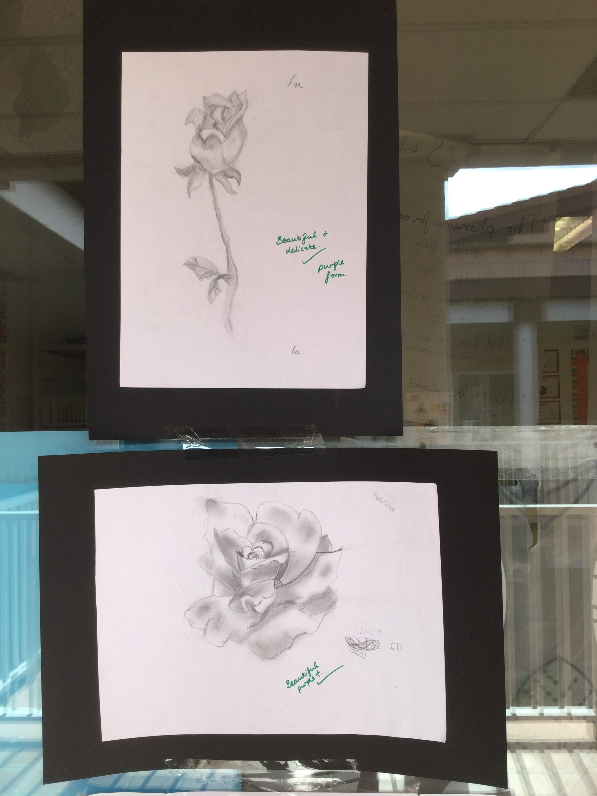 Perfect pencil drawings in y6